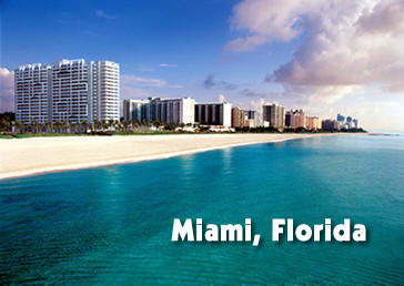 Image result for miami florida