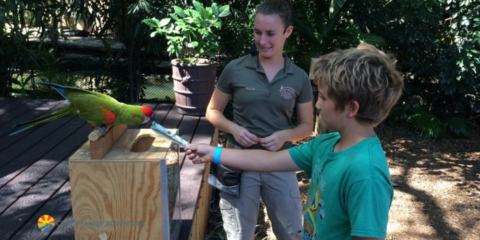 Five helpful reviews about the Palm Beach Zoo