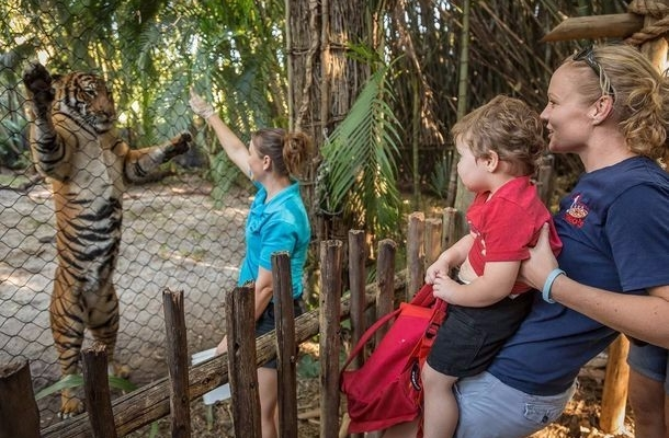 Five best reviews about Palm Beach Zoo, Florida